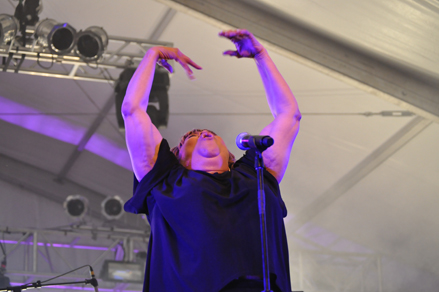 Mavis Staples at ACL (photo by Doug Van Pelt)